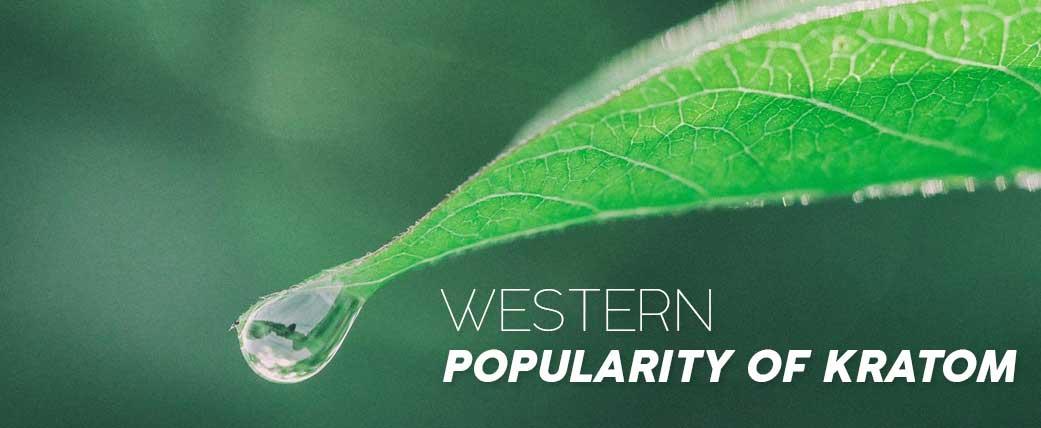 Increasing-western-popularity-of-Kratom