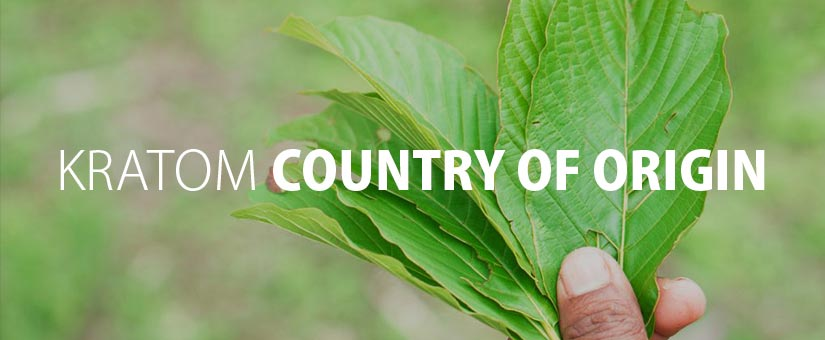 Kratom-and-Its-Country-of-Origin