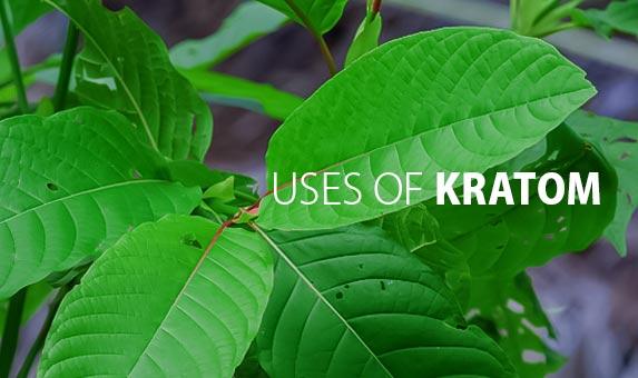 Uses-of-Kratom