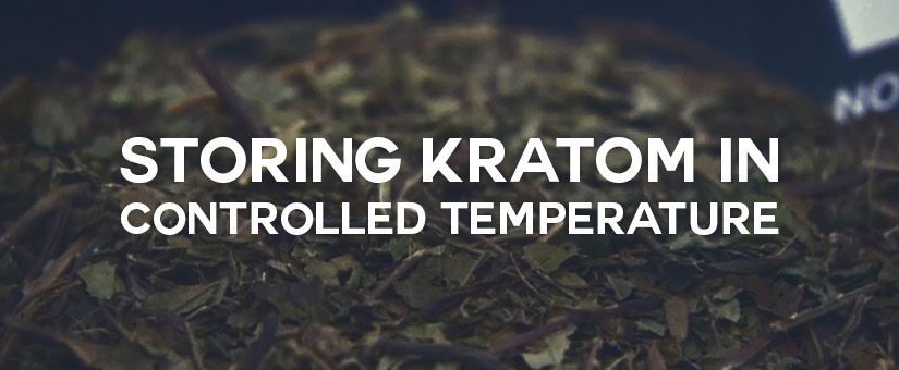 Storing-Kratom-in-Controlled-Temperature