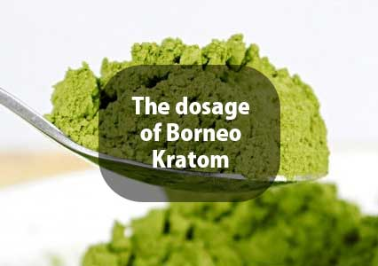 The-dosage-of-Borneo-Kratom