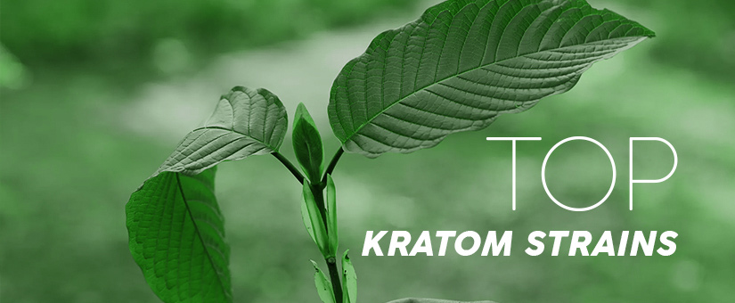 Top-kratom-strains