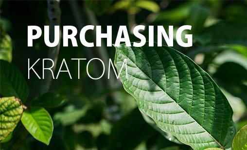 Purchasing-Kratom